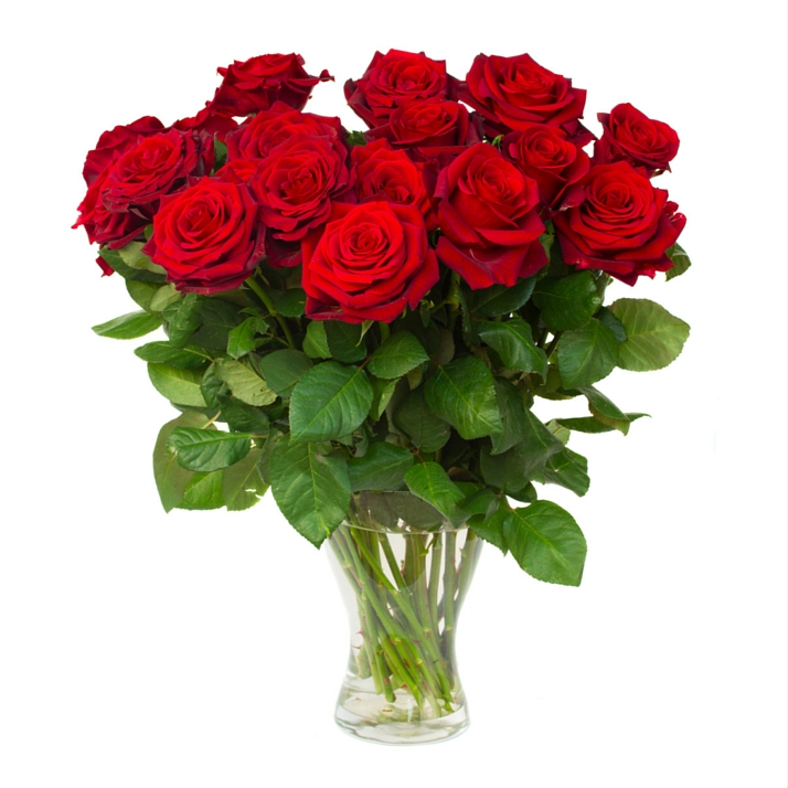 Red Roses - Home Page