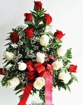 24 Fresh Rose Buds Red & White
