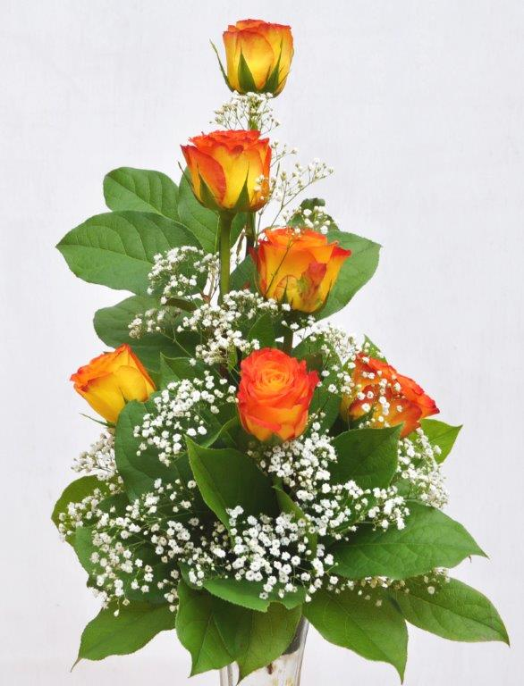 Rose bud vase arrangement shields and