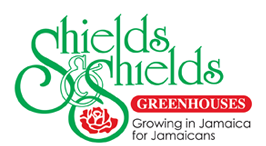 Shields and Shields-Growing in Jamaica for Jamaicans | Islandwide Delivery